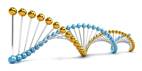 DNA Spiral with gold genes