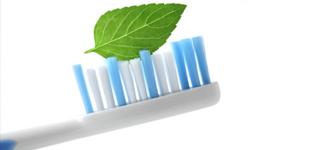 toothbrush with leaf on bristles